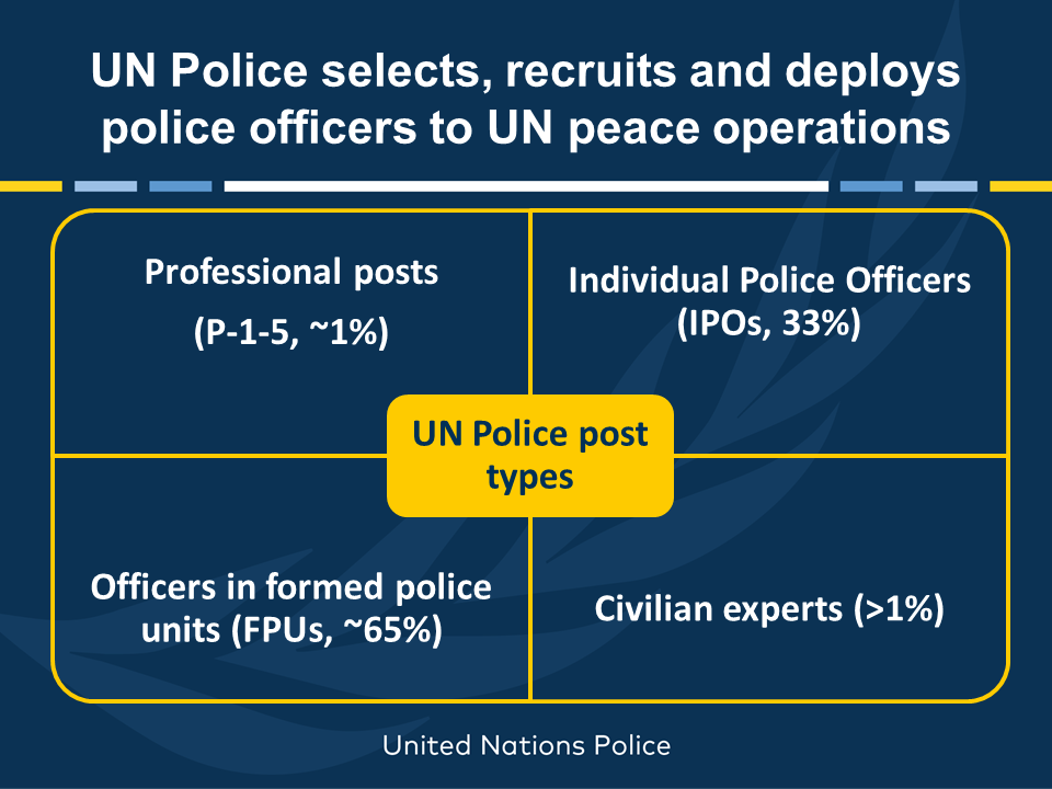 Post types of United Nations police officers.